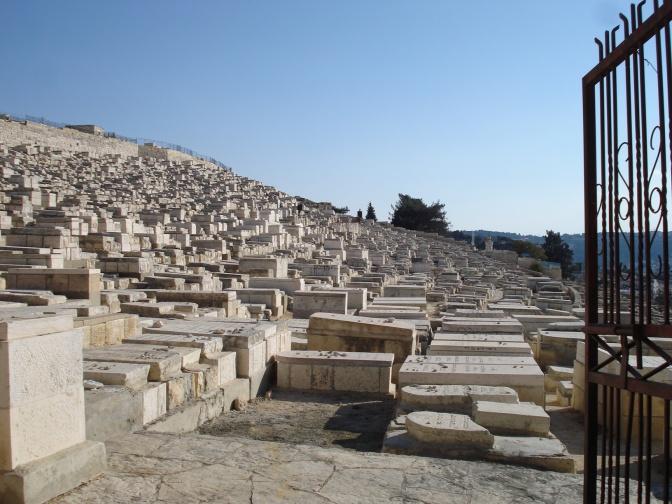 Israel 2008 034
